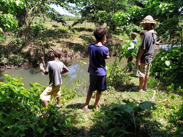 grupo pescando